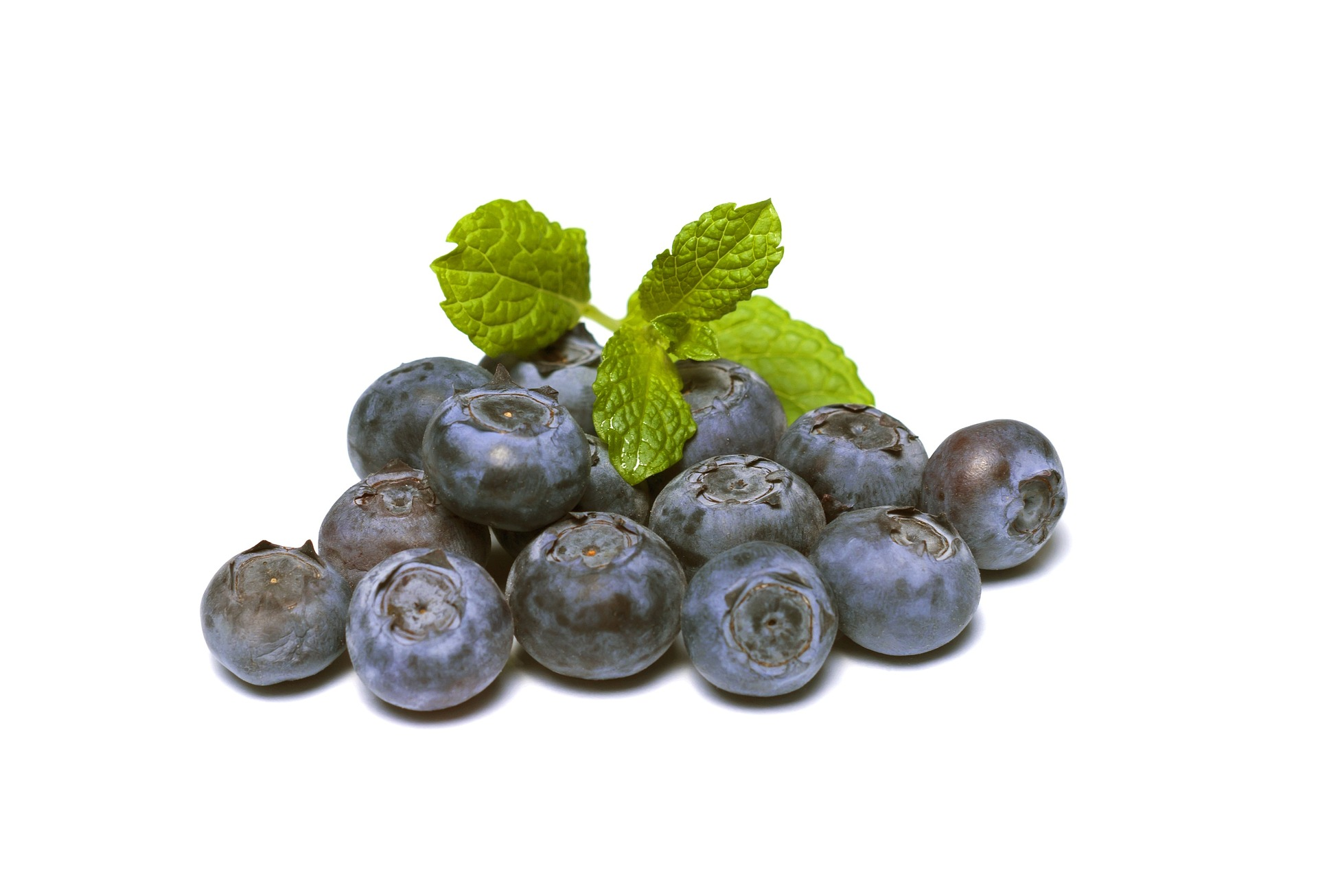 blueberries-894839_1920